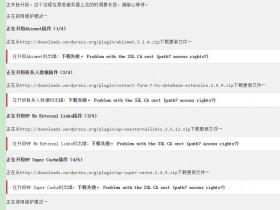 """【亲测好用!】阿里云ECS解决WordPress更新插件出现""""下载失败。Problem with the SSL CA cert""""错误"""
