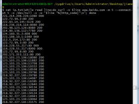 shell小技巧:用curl批量验证代理IP是否可用